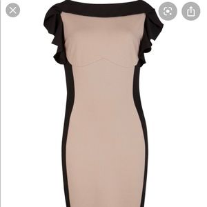 NWT Ted Baker ruffle taupe contrast dress!